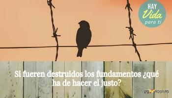 Si fueren destruidos los fundamentos ¿qué ha de hacer el justo? - Small